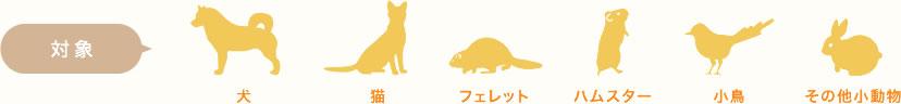 対象の小動物